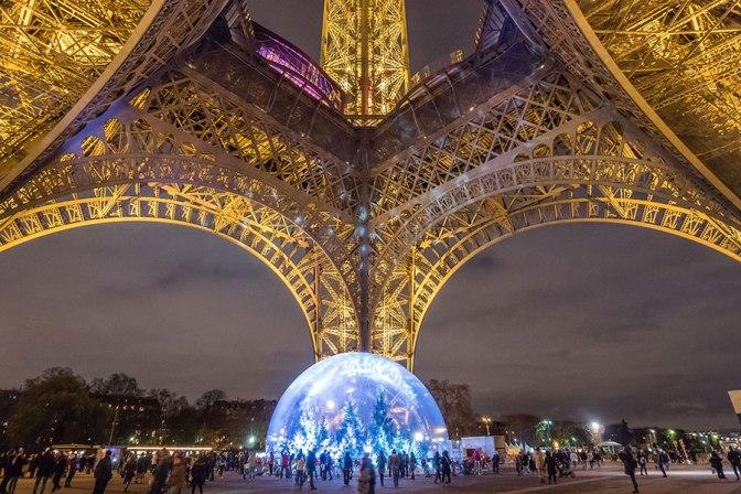 Une forêt de sapins sous la Tour Eiffel !